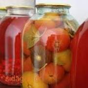 Ντοματάκια τουρσί - www.sidages.gr