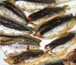 Γαύρος στο φούρνο  - συνταγές μαγειρικής- θαλασσινά