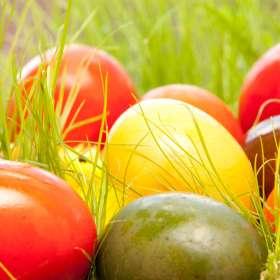 Οικολογική βαφή για τα Πασχαλινά αυγά