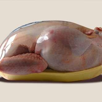 Πουλερικά - συνταγές μαγειρικής & ζαχαροπλαστικής
