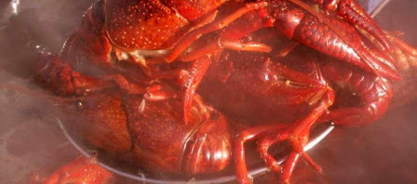 Καραβίδες βραστές - θαλλασινά - νηστίσιμα - συνταγές μαγειρικής