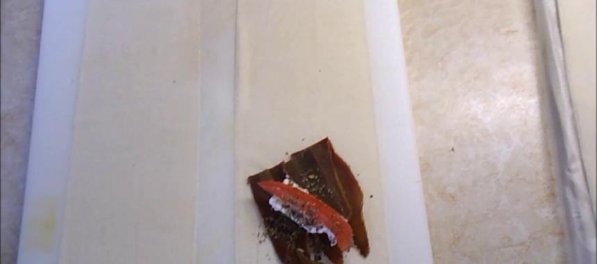 Παστουρμαδοπιτάκια με φέτα